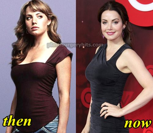 Erica Durance Breast Implants